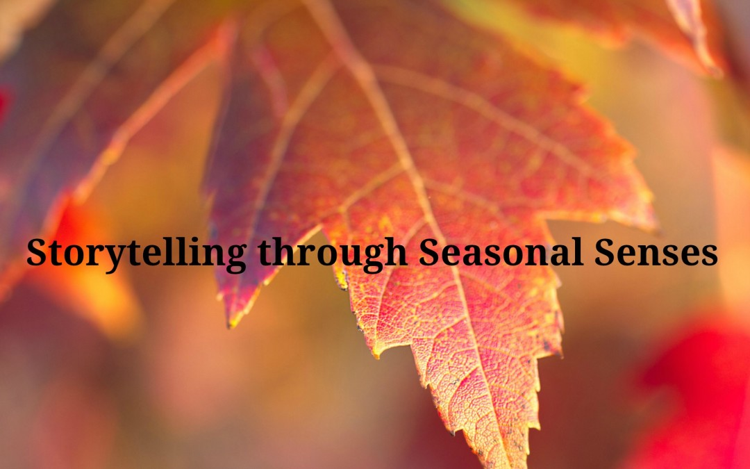 Storytelling Through Seasonal Senses